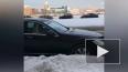 На Петроградской стороне чиновник чистил снег: это ...