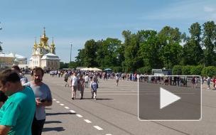 Петербуржцы встали в гигантскую очередь к фонтанам в Петергофе