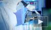 Биолог назвала условия прекращения пандемии коронавируса