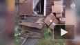 В Ленобласти 12-летняя девочка и ее спутник зарубили ...