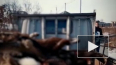 Жуткое видео из Благовещенска: Задержан владелец приюта ...