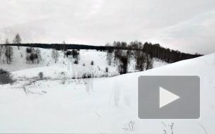 Лыжный тур на ферму к маламутам. Катание на собачьей упряжке