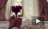 Поклонников Анастасии Волочковой шокировало фото ног