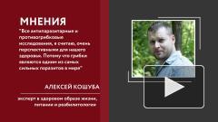 Российские ученые разработали революционный природный антибиотик: мнение эксперта