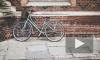 Смольный ищет проектировщиков для велодорожек