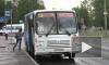 Нелегалы катают петербуржцев сказочными маршрутами
