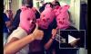 «Хрюши против» провели в «Народном» панк-молебен в духе Pussy Riot