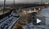 """Во время обрушения крыши СКК """"Петербургский"""" могли пострадать рабочие"""