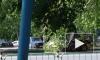 Дорожные работы ограничат движение в трех районах Петербурга