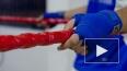 Ленивые боксеры довели тренера сборной РФ до отставки
