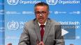 ВОЗ сообщила о вспышке лихорадки Эбола в Африке