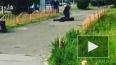 Опубликовано видео из Сургута, где неизвестный устроил ...