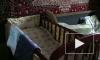 Яну Степанову, которая оставила детей одних дома, могут лишить родительских прав