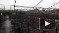 """Арестован директор сгоревшего детского лагеря """"Холдоми"""" ..."""