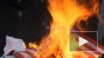 В Петербурге День независимости США отметили сожжением ...
