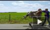 """Фильм """"Несносный дед"""" (2013) с Джонни Ноксвиллом из """"Чудаков"""" выходит в прокат"""