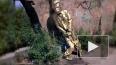 Писающий Сталин оскорбил украинских коммунистов