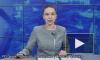 Насекомое ворвалось в студию российского канала и прервало эфир