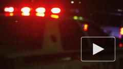 Правоохранительные органы проводят до дома нарушивших карантин
