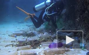 WWF: в мировой океан ежегодно попадает от 5 до 12 млн тонн пластика