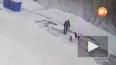 Жуткое видео из Иркутска: мужчина забил насмерть собаку ...