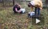 Енотовидную собаку, чуть не утонувшую в Неве, выпустили на волю