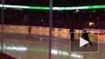 Видео: Голый болельщик выскочил на хоккейную площадку