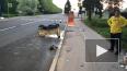 На Крестовском двое молодых людей на мотоцикле врезались ...