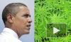 Самолет с марихуаной задержал вылет Обамы