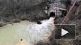 Экоактивисты нашли опасную концентрацию фосфора в ...