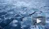 На Васильевском острове провалившихся под лед девочек спасли прохожие