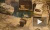 """Петербуржцупришлось сыграть в """"Тетрис"""" с мусорными баками, чтобы выехать со двора"""