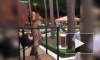 Жителей Владикавказа возмутил стриптиз на улице города