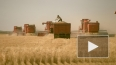 На Кировском заводе выпустили трактор с Глонасс и ...