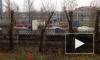 Колонна фур заблокировала полосу Московского шоссе: водители протестуют против платы за проезд