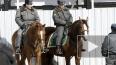 Влюбленных в Петербурге будет охранять конная полиция