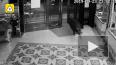 Видео из Китая: дикий 143-киллограмовый кабан ворвался ...