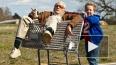 Хит-кино: Заряд перед Сочи-2014, Франкенштейн и дед-прик...
