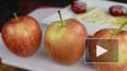 Диетологи назвали продукты, избавляющие печень от ...