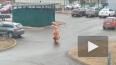 Житель Всеволожска вынес мусор в костюме динозавра