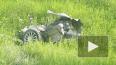Видео из Бурятии: Легковушку в ДТП с фурой разорвало ...