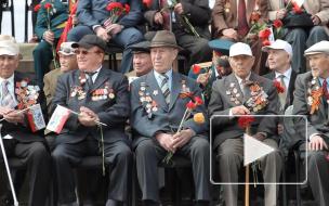 Голикова заявила об увеличении выплат ветеранам ВОВ в 2020 году