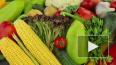 Овощи в Хабаровский край будут завозить из Турции ...