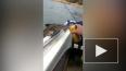 Видео: сом-алкоголик угостился пивом у рыбака
