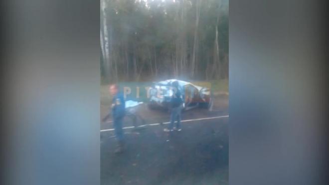 Видео: баритон Михаил Луконин погиб в аварии на трассе Петербург-Псков
