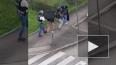 Видео: Во Франции неадекват взял в заложники беременную ...