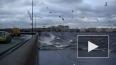 Уровень воды в Неве неуклонно поднимается, угрожая ...