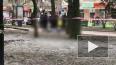 Видео из Ростова-на-Дону: Ветка дерева насмерть убила ...