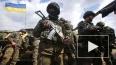 Новости Украины: уже в январе мобилизованных новобранцев ...