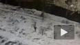 В сети опубликовано видео последних минут жизни погибшего ...